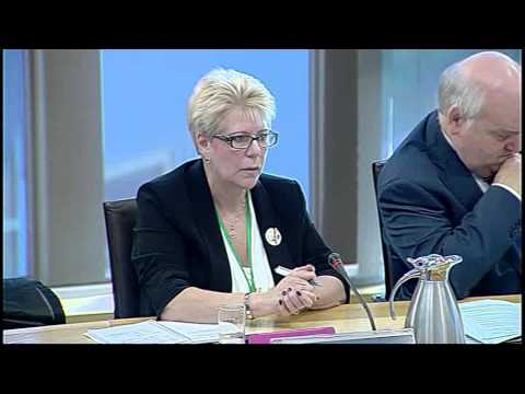 European & External Relations Committee - Scottish Parliament: 14th November 2013