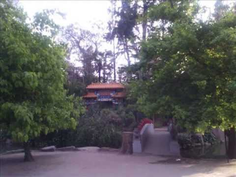 Jardin chino youtube for Jardin chino alcantarilla