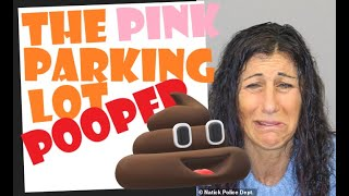ANOTHER Pink Pooper - Can We Say, 'PATTERN'?!!!....