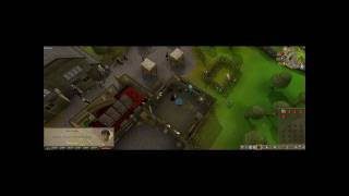 Runescape Money Making Guide to Millions - Redberry Lane