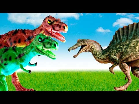 Dinosaurs - Spinosaurus VS Gorgosaurus. Hungry gorgosaurus attacked spinosaurus. Dinosaurs cartoon