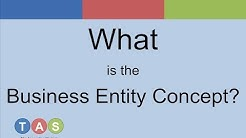 What is the Business Entity Concept?