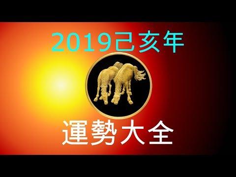 2019年己亥年運勢大合集:肖馬者