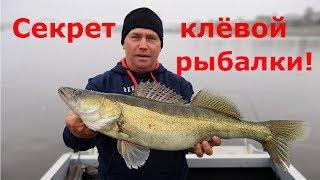 Трофейная рыбалка на карибах. Рыба тарпон.