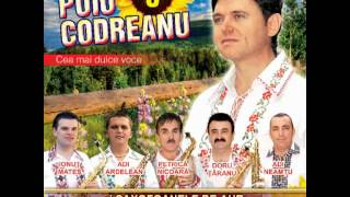 Puiu Codreanu - Pentru doi ochi ca și iarba - 2012