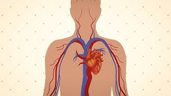EMP ¿Qué es la hipertensión?