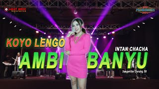 Download lagu Koyo Lengo Ambi Banyu - Intan Chacha  (Official Video Music)