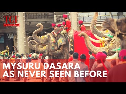 Never Seen Video of Mysore Dasara | What happens in Mysore Dasara | Mysore Dasara Guide | Mysuru