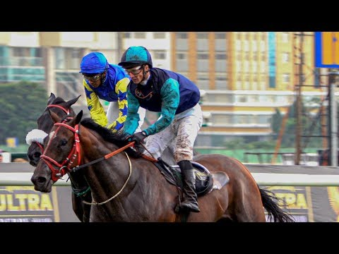 BANGALORE DERBY WINNER 2019   WELL CONNECTED
