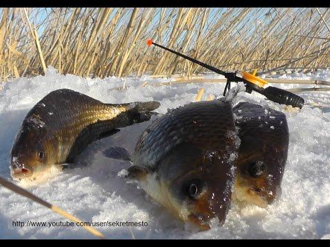 Прикормка для рыбы своими руками: Рецепты прикормки для рыбы