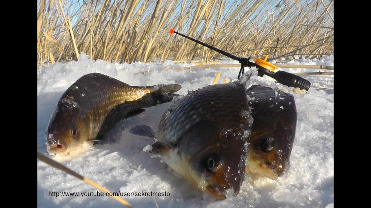 зимняя рыбалка на пк