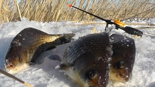Зимняя рыбалка на вкусного карася(В данном видео я показал как получилась у меня рыбалка на карася зимой. http://vk.com/sekretmesto http://ok.ru/sekretmesto https://www.fac..., 2015-11-30T07:07:17.000Z)