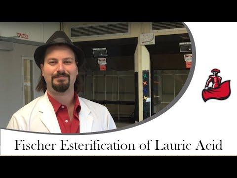 Fischer Esterification Of Lauric Acid