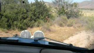 Urban off-roading east county San Diego