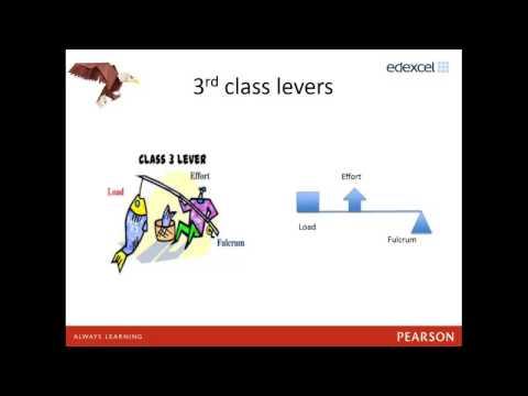 GCSE PE (9-1) Topic 2: Movement Analyis