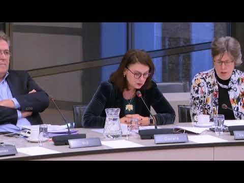 D66-Kamerlid wil Sint Eustatius nazificeren