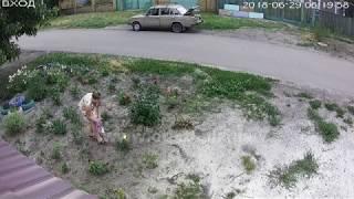 Покровск. Кража роз. 30.06.2018