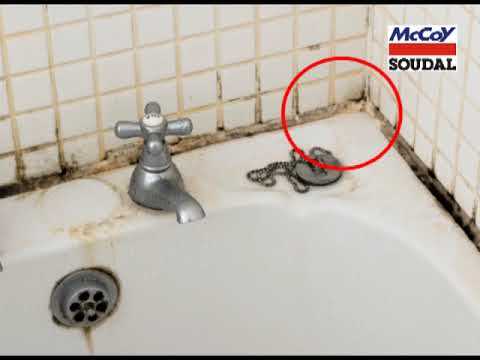 How to prevent mould in your bathroom, Kitchen & Wet Areas