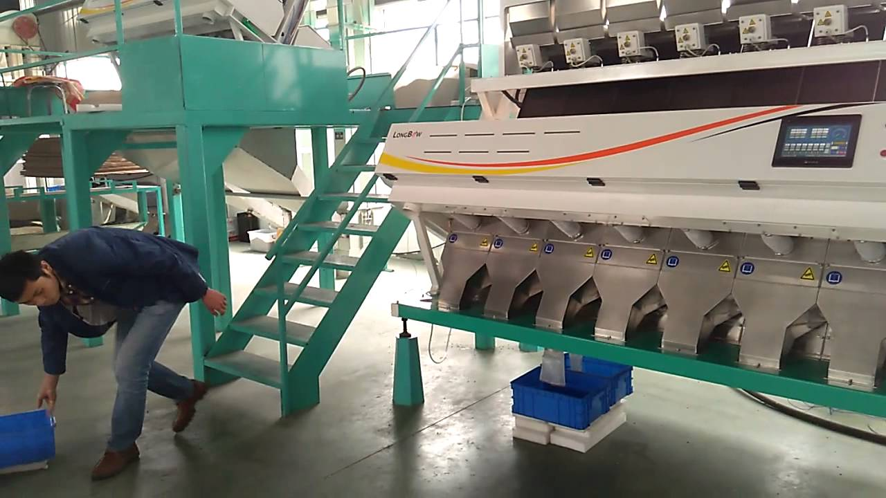 Electronic Coffee Sorting Machine coffee bean sorting of longbow color sorter youtube sorter