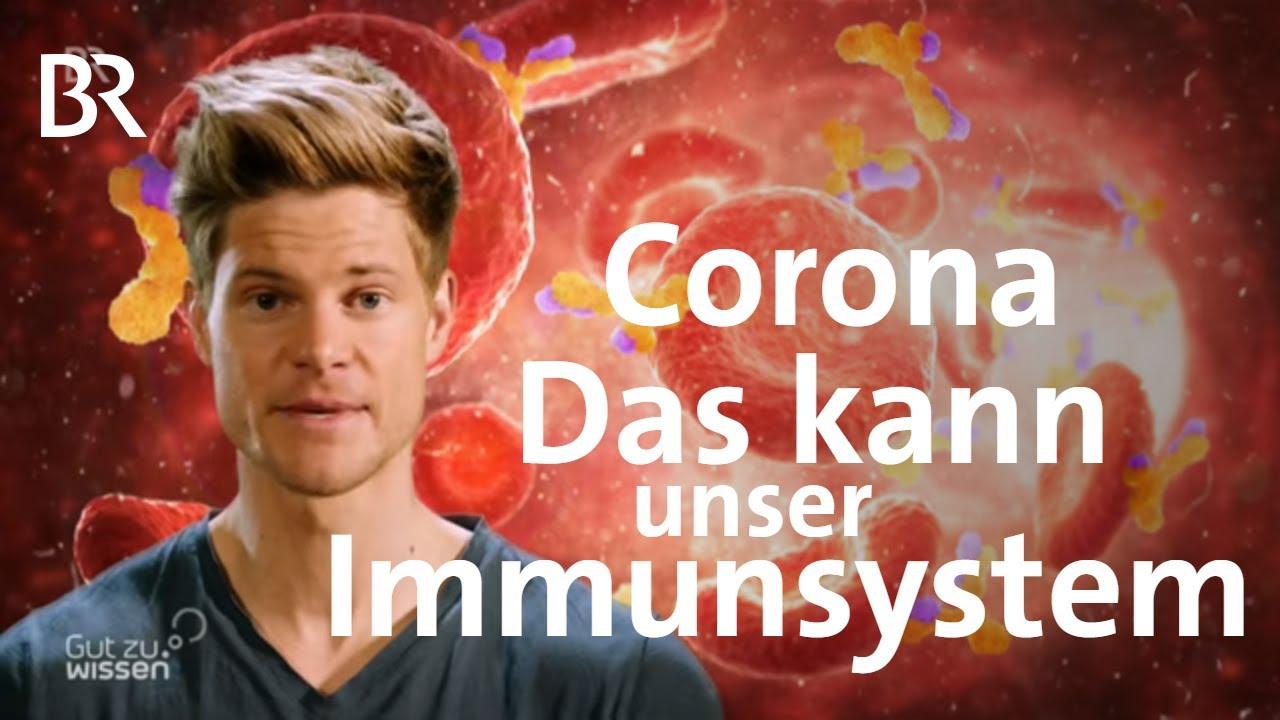 Corona: Wie werde ich immun? | Coronavirus | BR