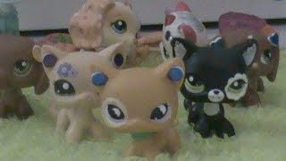 "Lps: Spy Girls Episode 3 ""training Day"""