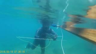 zıpkınla balık avı akyaka (tral3)