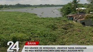 24 Oras: Rio Grande De Mindanao, umapaw nang barahan ng mga water hyacinth ang mga lagusan nito