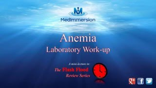 Anemia - Laboratory work-up introduction