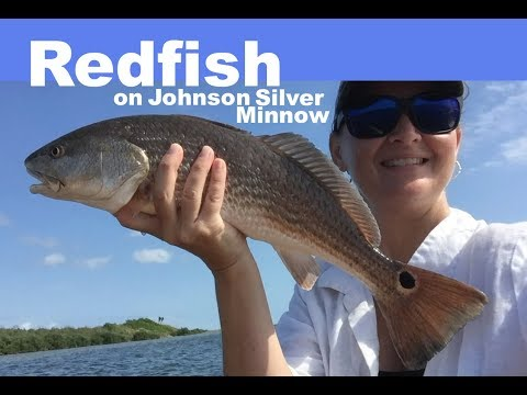 Catching Redfish On Johnson Silver Minnow - Texas Flats Fishing (30mo Archives)