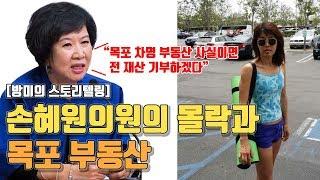 손혜원 의원의 몰락과 목포 부동산
