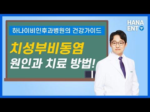 임플란트 하기전에 체크해야되는 치성부비동염 원인과 치료방법 [하나이비인후과병원] [역삼역]