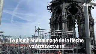 Le chantier unique au monde de Notre Dame de Paris