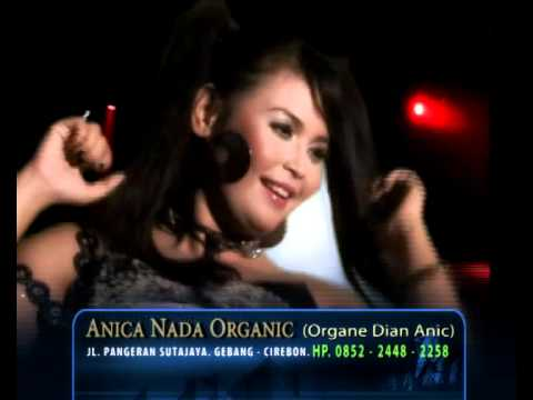 Gangnam Style DIAN ANIC - PULSAKU HABIS (ORIGINAL)