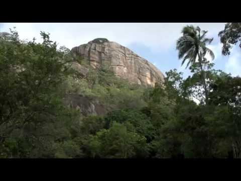 SRI LANKA : CARNET DE VOYAGE et DOCUMENTAIRE/ reportage ( travel & documentary)