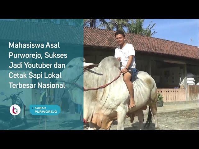 Pengusaha Muda Purworejo Ini, Sukses Jadi Youtuber dan Cetak Sapi Lokal Terbesar Nasional