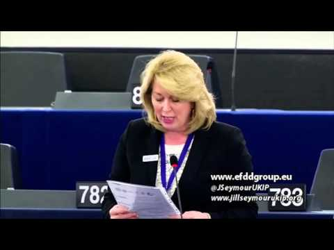 It is not for the EU to regulate British ports - Jill Seymour MEP