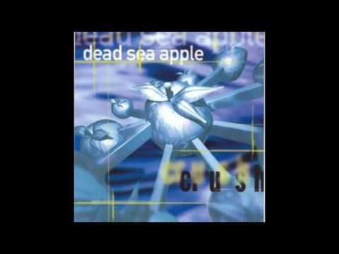 Dead Sea Apple - Growing Old