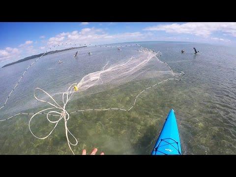 Florida Keys Kayak Fishing - Where The Pilchards Are.