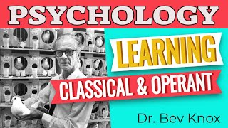 Learn Psychology While You Sleep - Learning: Classical & Operant Conditioning