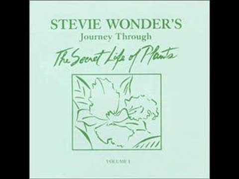 Come Back As A Flower - Stevie Wonder
