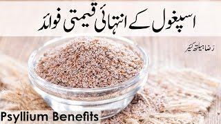 Asphaghol Ke Intehai Mufeed Fawaid   Psyllium Seeds Benefits   اسپٖغول کے انتہائی مفید فائیدے