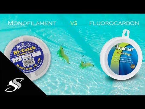 Fishing 101: What Is A Leader Line?  Monofilament Or Fluorocarbon?