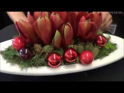 Leuchtend Rote Weihnachtszeit Mit Amaryllis Youtube