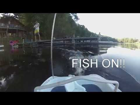 Catching Fish With Remote Control Boat!