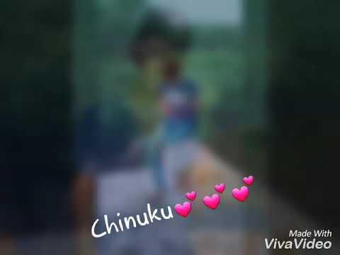 Chinuku chinuku st song dj bunny