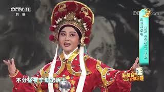 [梨园闯关我挂帅]豫剧《花木兰》选段 演唱:王聆燕| CCTV戏曲