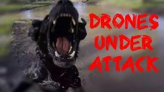 DRONES UNDER ATTACK - Drone Fails