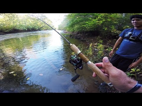 Creek bass fishing with light tackle bass clip60 for Lunkerstv fishing rods
