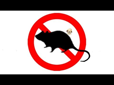 ▶️ Mouse & Rat Ultra Sonic Deterrent. Mice Ultrasonic Repellent. 12 Hours 📢