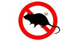 ▶️ Mouse & Rat Ultra Sonic Deterrent. Mice Ultrasonic Repellent. 12 Hours 📢